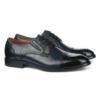 Kožne muške cipele HL1051D-5-M110-M131 teget crne