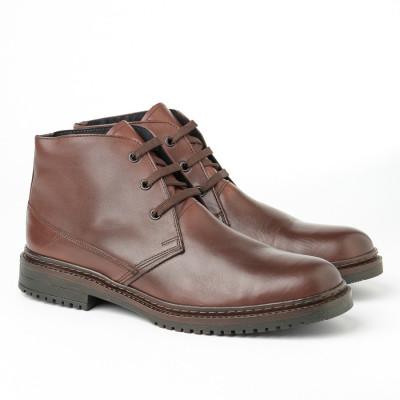 Kožne muške duboke cipele 8141 braon