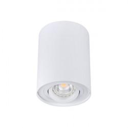 Aplica Kanlux 22551 BORD DLP - Plafoniera aplicata led, max 25W, GU10, IP20, alb
