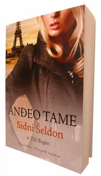 Anđeo tame - Sidni Šeldon