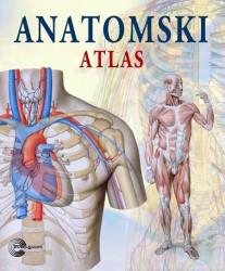 Anatomski atlas - Adrijana Riguti
