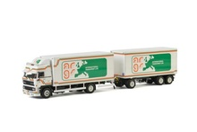 WSI 1:50 - DAF 3600 Space Cab (LHD) Combi ARGS Transport Ltd (UK)