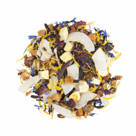 COCONUT CARAIBBEAN DREAM FRUIT HERBS ceai bio amestec de fructe si plante cu gust de mango si cocos