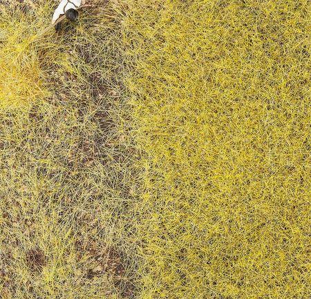 FALLER 170776 PREMIUM STROOIMATERIAAL, STRO, 6 MM, 30 G