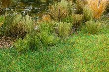 FALLER 170769 LANG GRAS, 4 SET (5/19) *