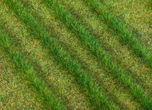 FALLER 171398 GRASSTROKEN, DONKER (5/19) *