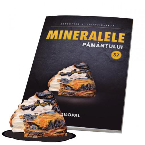 Editia nr. 37 - XILOPAL (Mineralele Pamantului)