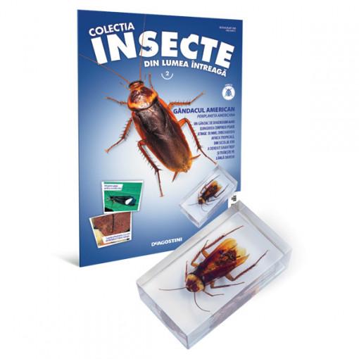 Insecte editia nr. 02 - Gandacul american