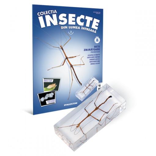 Insecte editia nr. 03 - Bete Zburatoare