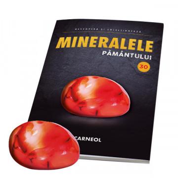Editia nr. 30 - Carneol (Mineralele Pamantului)