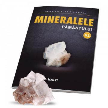 Editia nr. 62 - Halit sare gemă (Mineralele Pamantului)