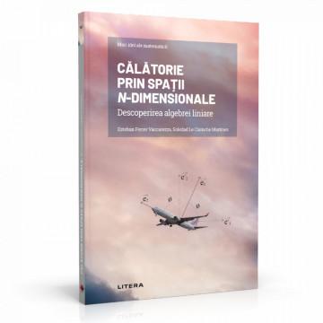 Ediția nr. 8 - Călătorie prin spații n-dimensionale (Mari idei ale matematicii)