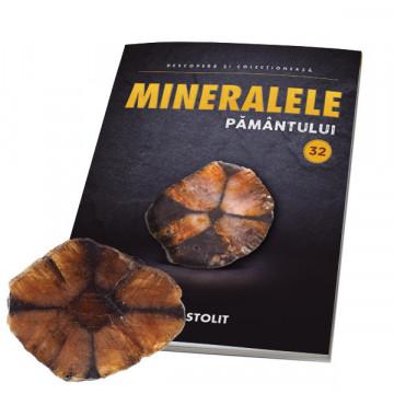 Editia nr. 32 - Chiastolit (Mineralele Pamantului)