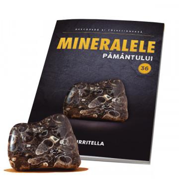 Editia nr. 36 - TURRITELLA (Mineralele Pamantului)