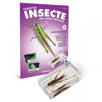 Insecte editia nr. 05 - Lacusta Exotica