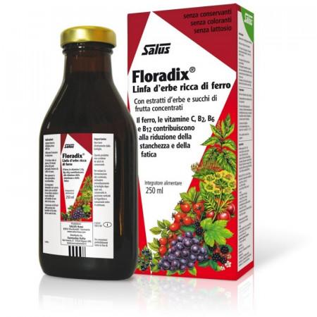 Floradix integratore di Ferro - Salus immagini