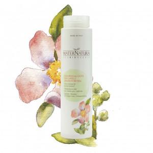 Shampoo al Cisto per capelli grassi/forfora - MaterNatura