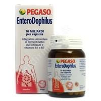 Capsule Enterodophilus 40cps per regolare l'intestino - Pegaso