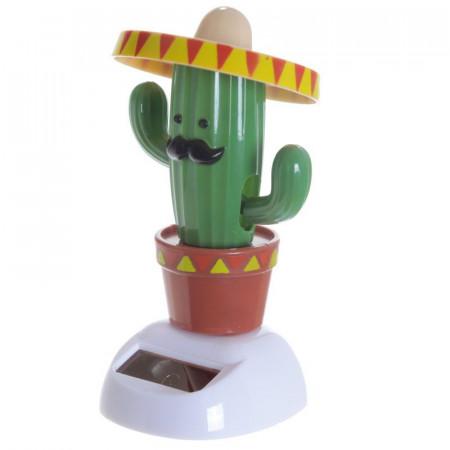 Cactus solar 2