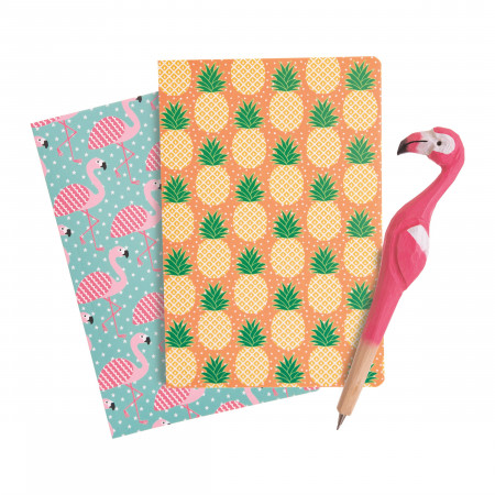 Set carnetele si pix Flamingo