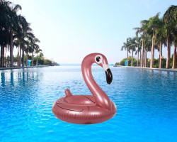 Colac gonflabil flamingo in piscina
