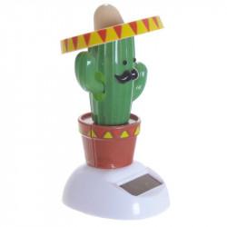 Cactus solar 6