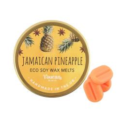 Ceara aromaterapie soia Ananas 1