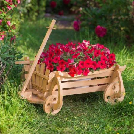 Poze Caruta de Grădină