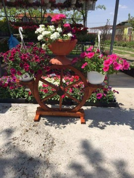 Poze Suport pentru Flori