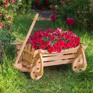 Caruta de Grădină