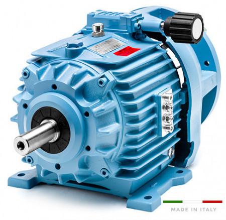 Variator de turatie hidraulic tip 11.K5/000/A10.1 - 4w 4poli 100B5