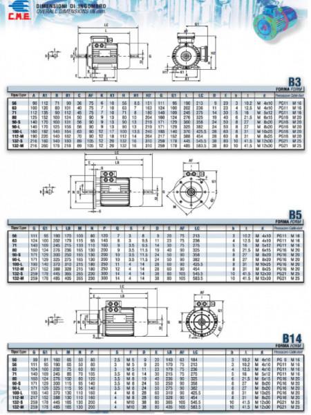Motor electric trifazat cu doua viteze 2.8/2kw 1400/1000rpm 112 B14