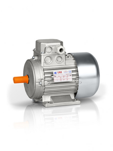 Motor electric trifazat cu doua viteze 0.75/0.55kw 1400/1000rpm 80 B3