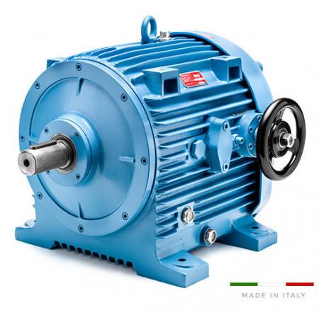 Variator de turatie hidraulic tip 11.16B/000/1 - 7.5kw 6poli 132B5