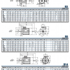 Motor electric trifazat cu doua viteze 0.75/0.55kw 1400/1000rpm 80 B5