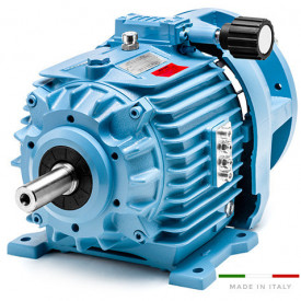Variator de turatie hidraulic tip 11.K5/000/A10.1 - 4w 4poli 100B14