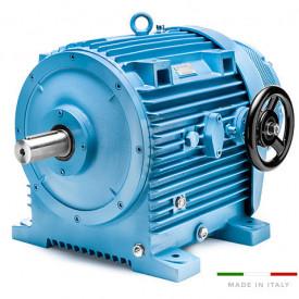 Variator de turatie hidraulic tip 11.17/000/1 - 11kw 6poli 160B5