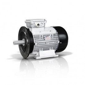 Motor electric trifazat 30kw 750rpm 250 B5