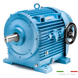 Variator de turatie hidraulic tip 11.16/000/1 - 5.5kw 6poli 132B5