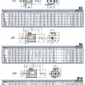 Motor electric trifazat cu doua viteze 0.55/0.37kw 1400/1000rpm 80 B3
