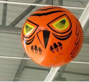 Slika Terror Eyes - Balon strašilo za rasterivanje ptica
