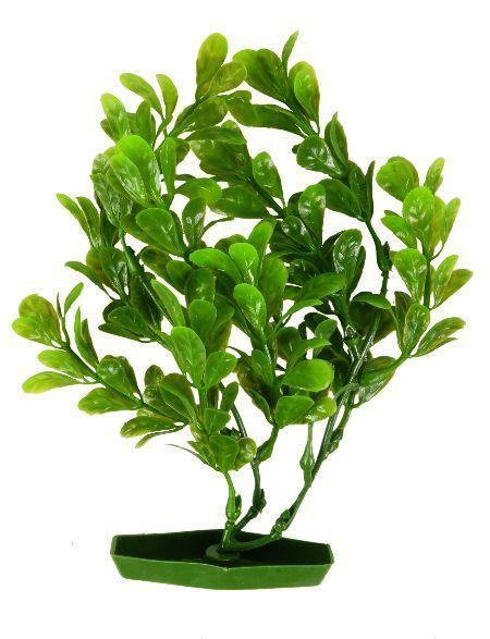 Trixie 6 akvarijumskih biljaka, malo ( 8967 )