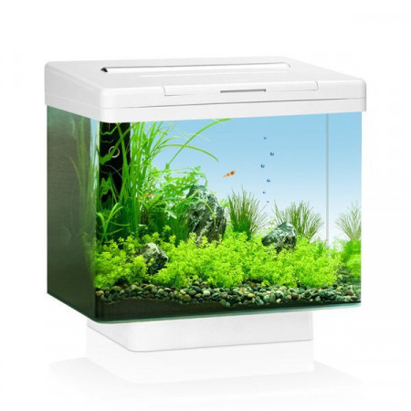 Juwel Vio 40 white akvarijum ( JU20044 )