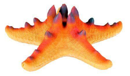 Trixie Morska zvezda sa magnetom 10.5 cm ( 8896 )