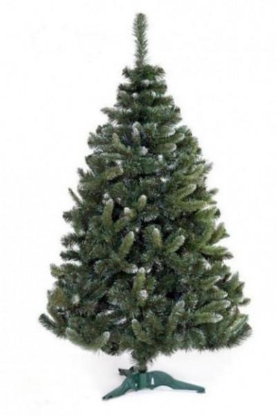 Slika Zelena novogodišnja jelka sa belim vrhovima 250 cm
