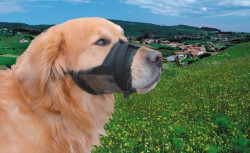 Nobby 79282 Korpa za pse najlon crna 1 (sm) ( NB79282 )