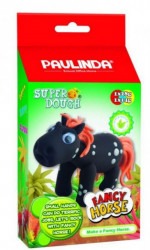 Paulinda Fancy konjić ( 09/501 )