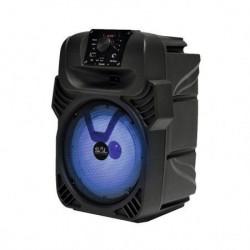 Sal Zvučna kutija sa akumulatorom 40W ( PAR20BT )