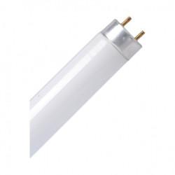 Spectra LED CEV T8/150 24W LCA1T8-24 6500K ( 113-2003 )