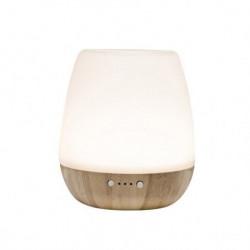 Stona ultrazvučna aroma lampa ( AD20 )